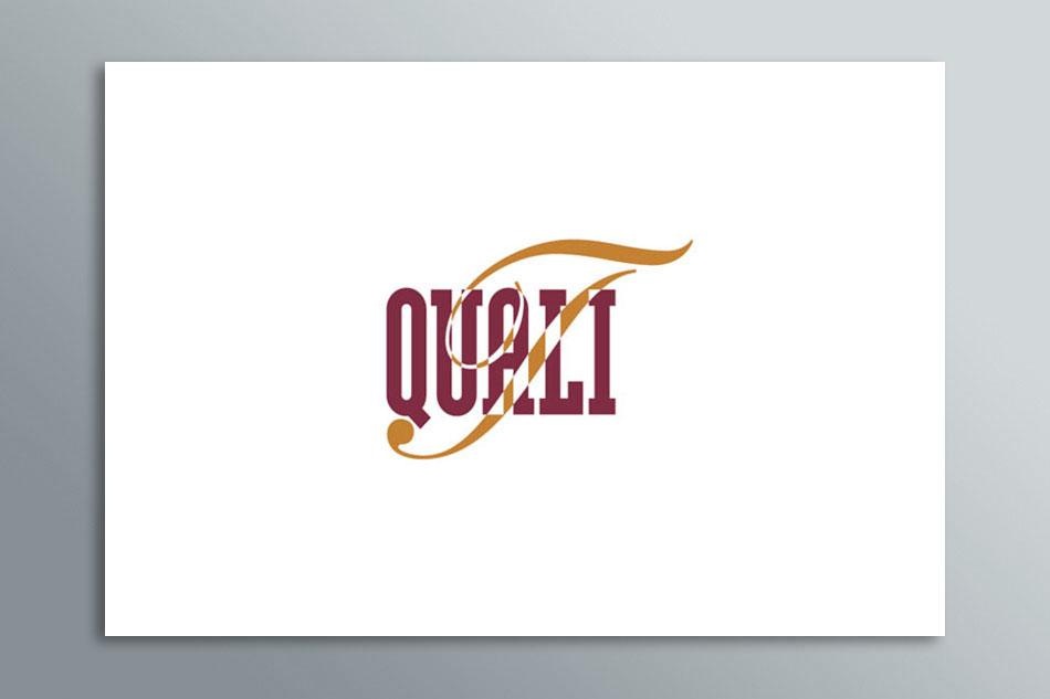 Mesh-Large_Logo-QT